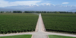 catena-andes.jpg